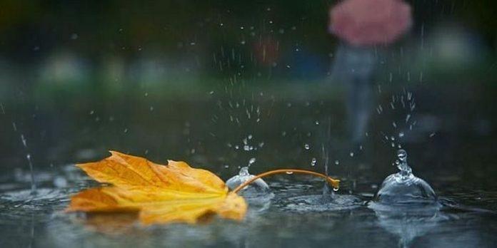 toamna ploaie