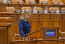 Beatrice-Tudor-PSD-deputat
